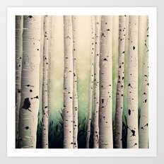 Birch wood at Midsummer Art Print