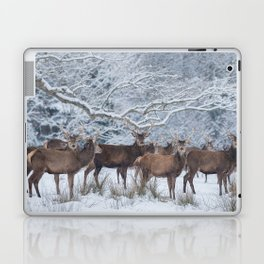 Red deers  from wintry Killarney National Park Laptop & iPad Skin