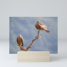 Black Kites Mini Art Print