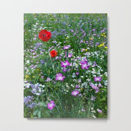 Wild Flower Meadow Metal Print