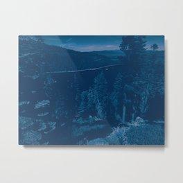 0213 Metal Print