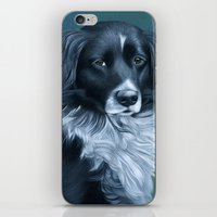 border collie iPhone & iPod Skins featuring Border Collie by MMGoldenArt