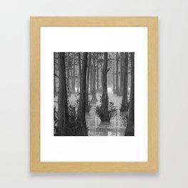 Adams Mill Pond 50 B&W Framed Art Print