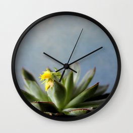 Succulent plant with little yellow flower Wall Clock