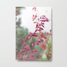 Botanicals v. 2 Metal Print