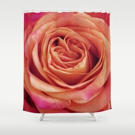 A Summer Bouquet 12 - orange rose Shower Curtain