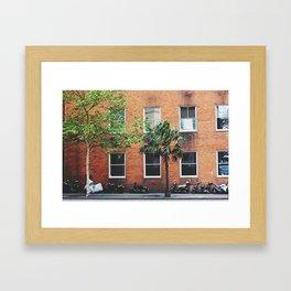 Urban Tales Framed Art Print