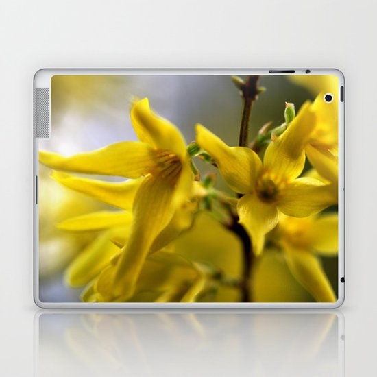 Golden Spring Laptop & iPad Skin