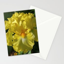 Golden Iris flower - 'Power of One' Stationery Cards