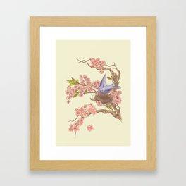 Sakura Blues Sakura Blossoms Framed Art Print