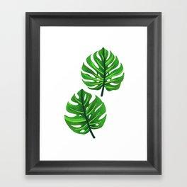 green monstera leaves illustration Framed Art Print