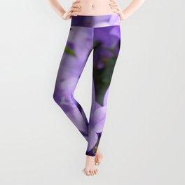 DREAMY - Purple flowers - Bellflower in the sun #1 Leggings