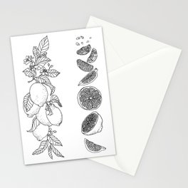 Citrus Branch of Lemons and Slices of Fruit Stationery Cards
