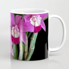 Laeliocattleya Orchid Coffee Mug