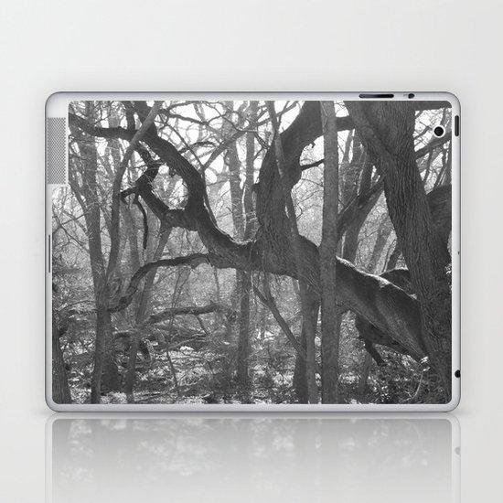 Enchanted Wood Laptop & iPad Skin