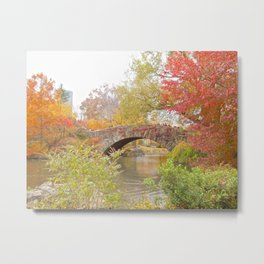 Fall in Central Park, NYC Metal Print