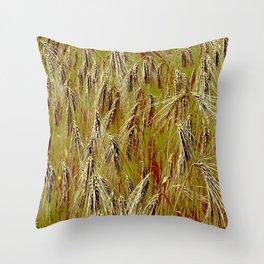 Field of barley II Throw Pillow