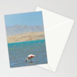 Paracas, Peru II Stationery Cards