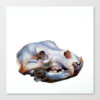 animal skull Canvas Prints featuring Animal Skull by teethbone (Tyler Snell)