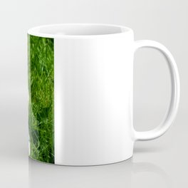 The Egg Keeper Coffee Mug
