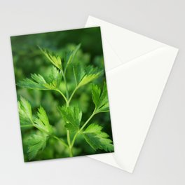 Close picture of parsley Stationery Cards