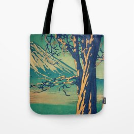 Late Hues at Hinsei Tote Bag