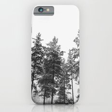 simply trees in winter iPhone 6s Slim Case