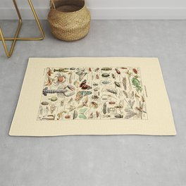 Vintage Insect Identification Chart // Arthropodes by Adolphe Millot 19th Century Science Artwork Rug