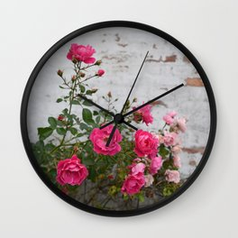 pink roses and old wall Wall Clock