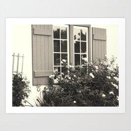 Window & Roses Art Print