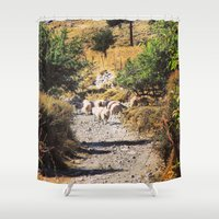 sheep Shower Curtains featuring Sheep by Mr & Mrs Quirynen
