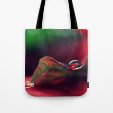 A Gift For The Season Tote Bag