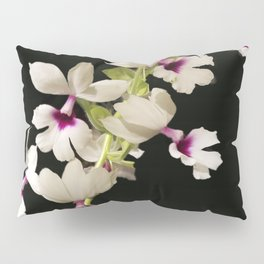 Calanthe rosea Orchid Pillow Sham