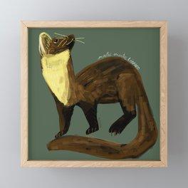 Fluffy Marten ( Martes martes ) Framed Mini Art Print