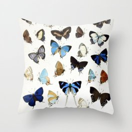 Vintage Butterfly Illustration Throw Pillow