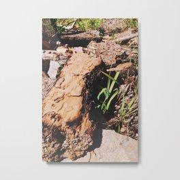 bark pile Metal Print