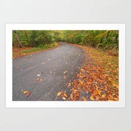 Winding Autumn Forest Road Art Print