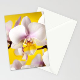 Orchids Flower Stationery Cards