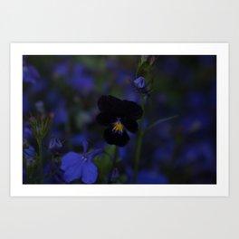 Black and Blue Flower Art Print
