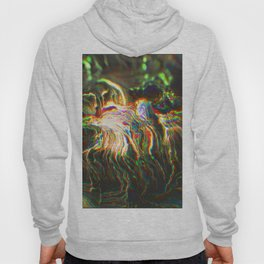 Arrogant Colours, Insecure Generations 234 Hoody