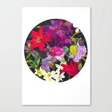 Black Parrot Tulips Canvas Print