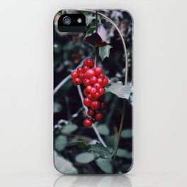 Wild berries in the forest iPhone Case