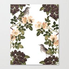 Blackberry Spring Garden - Birds and Bees Cream Flowers Canvas Print