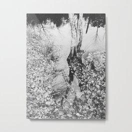 Autumn 12 Metal Print