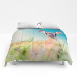 Whitetail Deer Painting Comforters