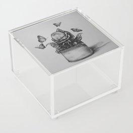 Hungry Acrylic Box