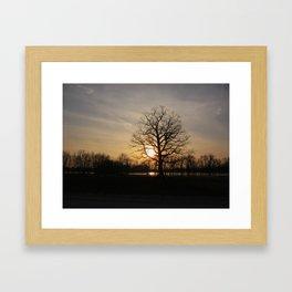 Ixonia Marsh Framed Art Print