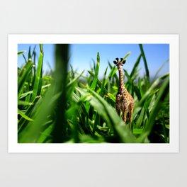 Miniature Giraffe Art Print