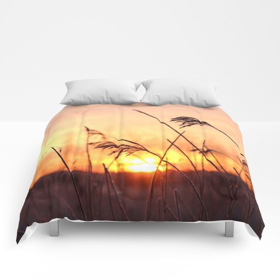 Winter Sunrise  Comforters
