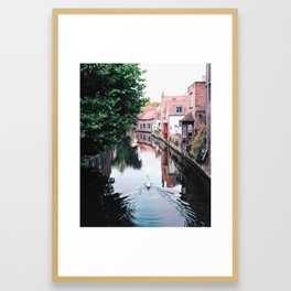 Swan in Belgium Framed Art Print